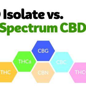 CBD Isolate vs Full spectrum